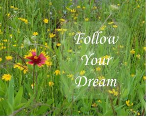 4 Tips to Make Your Dream Come to Life